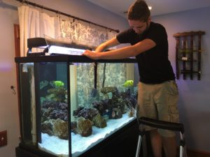 Aquarium Cleaning Service Central NJ