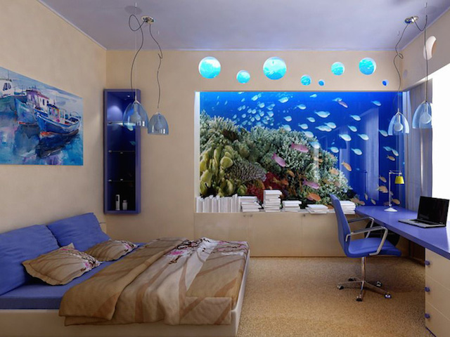 Custom Aquariums Cabinetry Filtration Systems And Steel
