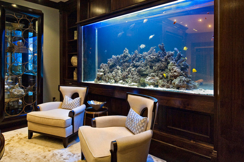fish-tank-setup-ideas