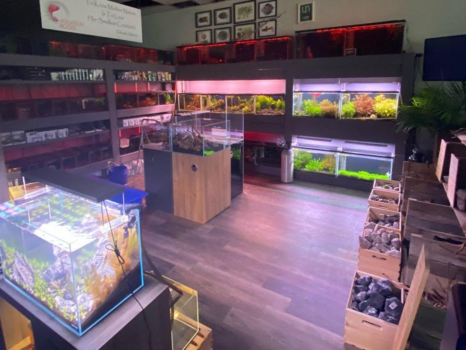 shownroom for acquarium service professionals.jpg